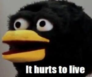 aww, bird, and depressed image