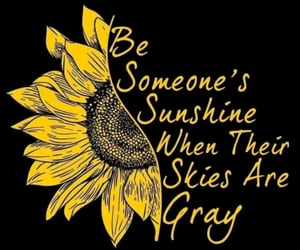 kindness, quote, and sunshine image