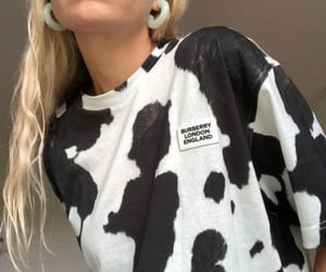 aesthetic, cow, and theme image