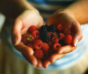 berries, fruit, and hands image