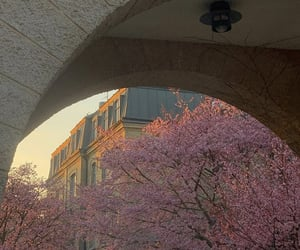 architecture, buildings, and florals image