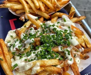 cheese, chips, and fries image