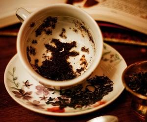 divination, harry potter, and hogwarts image