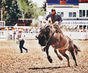 country, rodeo, and rural image