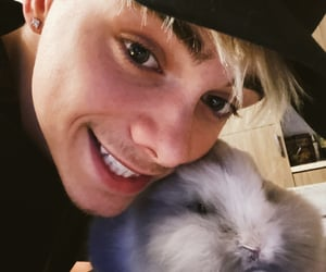 bunny, easter, and fluffy image