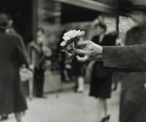 flowers, black and white, and 60s image