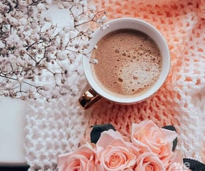 fashion, roses, and coffee image