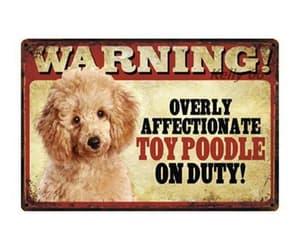dog, doggifts, and poodle image
