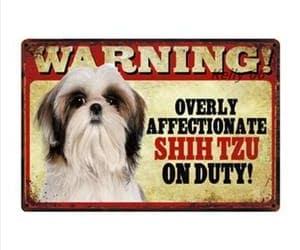 dog, shihtzu, and doglover image