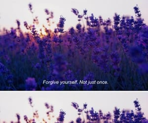 forgive, lavender, and life image