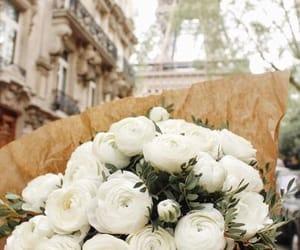flowers, paris, and white image