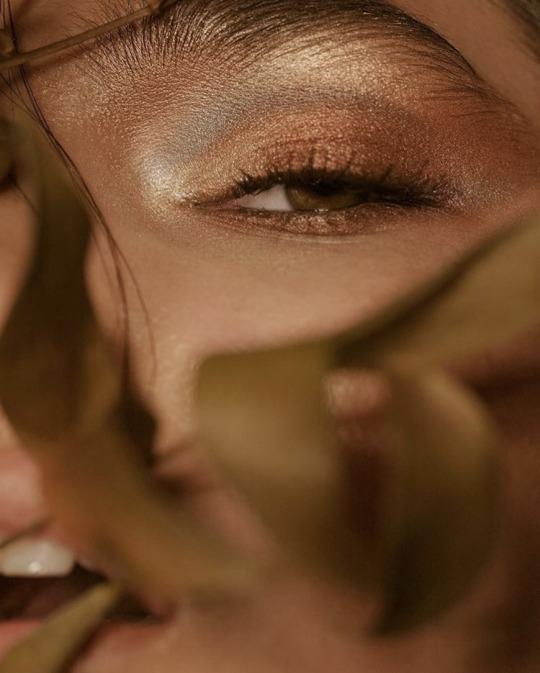 aesthetic, bronze, and eye image