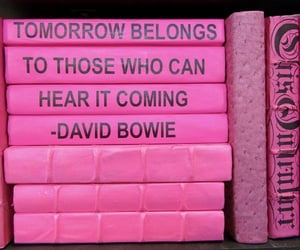 bowie, pink, and quotes image