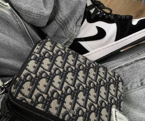 aesthetic, bag, and Christian Dior image
