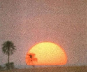 aesthetic, sunset, and sun image