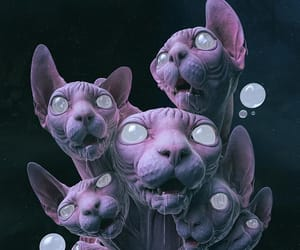 alien, cats, and gah!! image