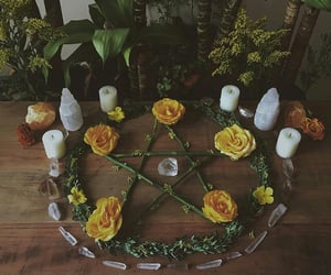wicca, crystal, and plants image