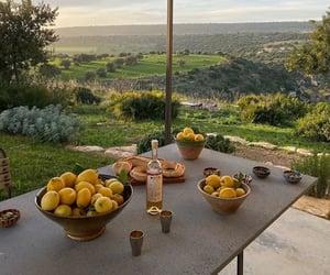 travel, lemon, and summer image