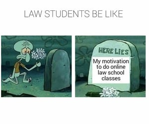 funny, memes, and motivation image
