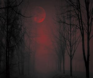 alternative, dark, and gothic image