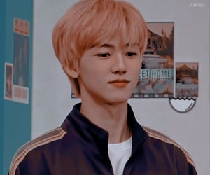 coral, kpop, and nct image