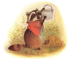 beatrix potter, fairytale, and raccoon image