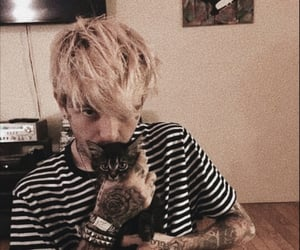 lil peep, cat, and kitten image