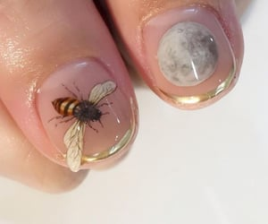 bee, moon, and nails image