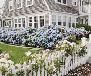 backyard, Dream, and garden image