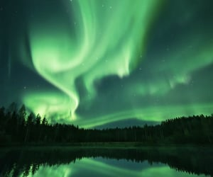 green, forest, and northern lights image