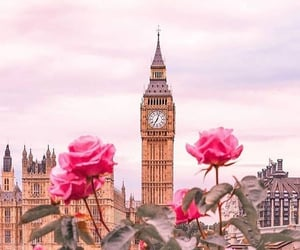 london, rose, and flowers image