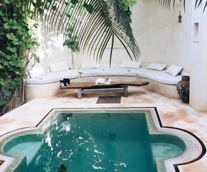 pool, home, and cats image