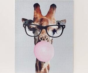 animals, cute giraffes, and giraffe bubblegum image
