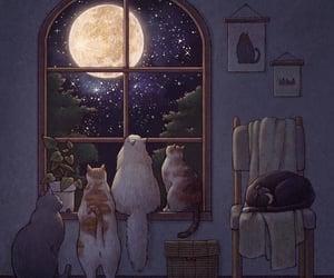 animals, cat, and illustration image
