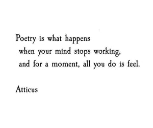 poetry, quotes, and words image