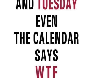 bored, calander, and quotes image