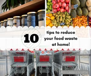 environmentally friendly, reduce food waste, and earth day image