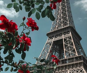 paris, wallpaper, and flowers image