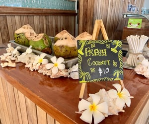coconut, fiji, and Island image