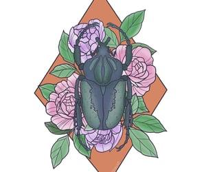 art, artist, and beetle image