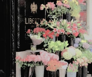 aesthetic, flowers, and icon image
