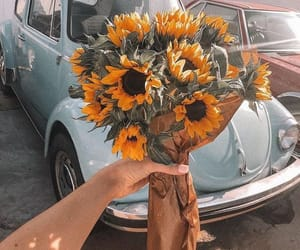 flowers, car, and sunflower image