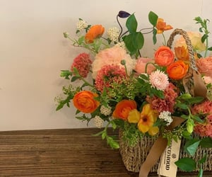 beauty, bouquet, and floral image