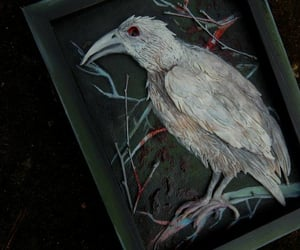 albino, artwork, and raven image