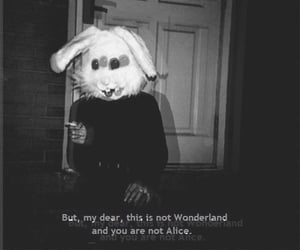 alice in the wonderland, quotes, and black image