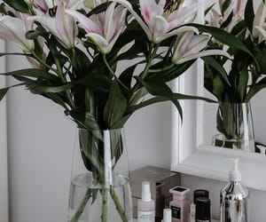 flowers, lily, and room decor image