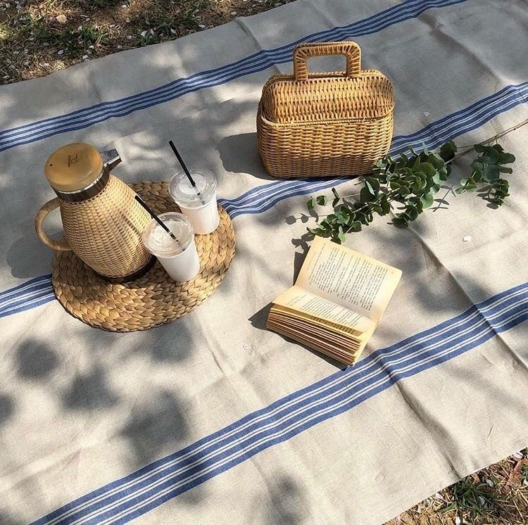 aesthetic, picnic, and book image