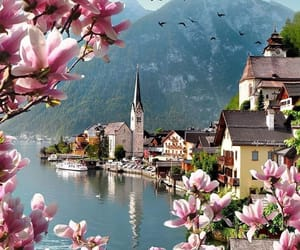 travel, austria, and flowers image