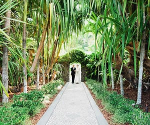 wedding, wedding venue, and wedding planning image
