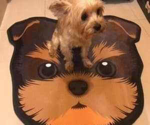 gifts for dog lovers, dog lover gifts, and yorkie gift image